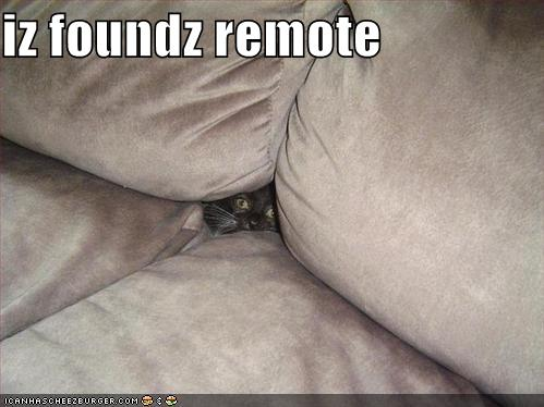 funny-pictures-cat-found-remote.jpg