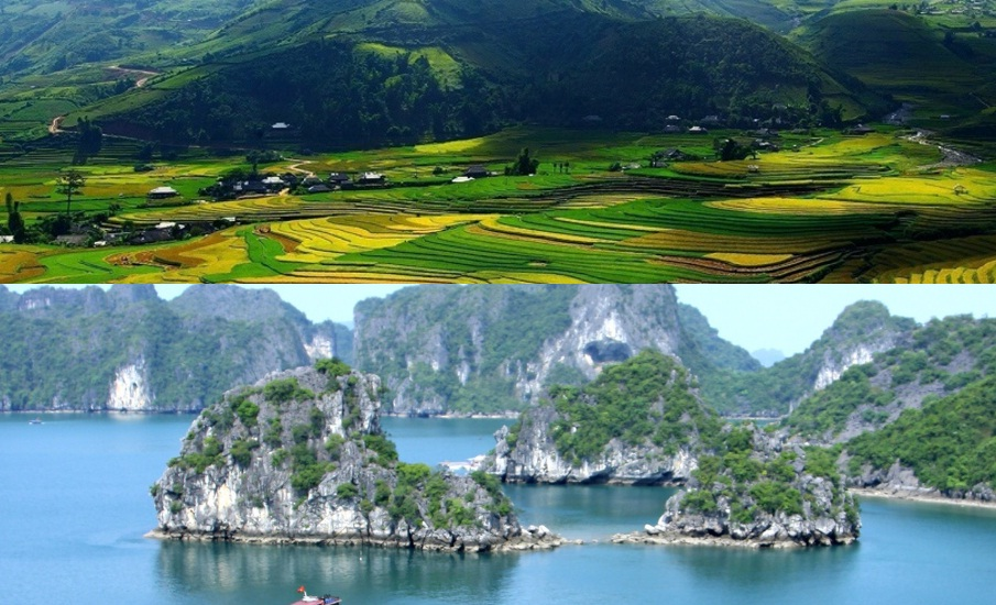 Vietnam Travel Visa Assistance