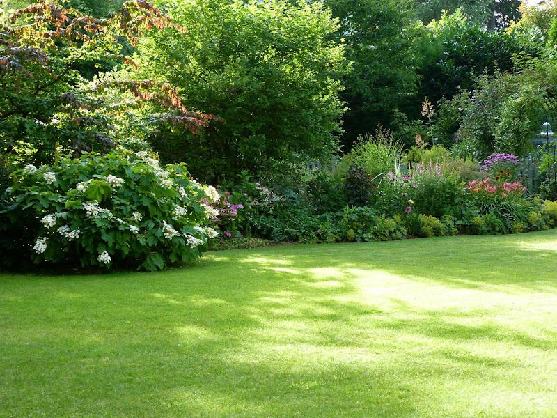 Les pins noirs sc nes mi ombre for Jardin de particuliers a visiter