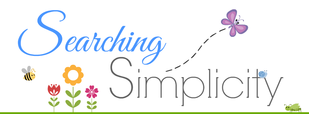 Searching Simplicity