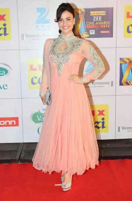 1839 - Elli Avram In Designer Anarkali Suit At Zee Cine Awards 2014