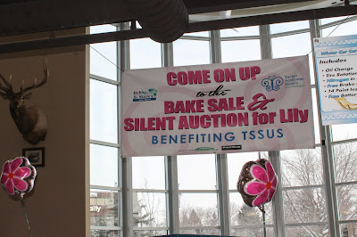 Banner for the Turner Syndrome Society of the United States