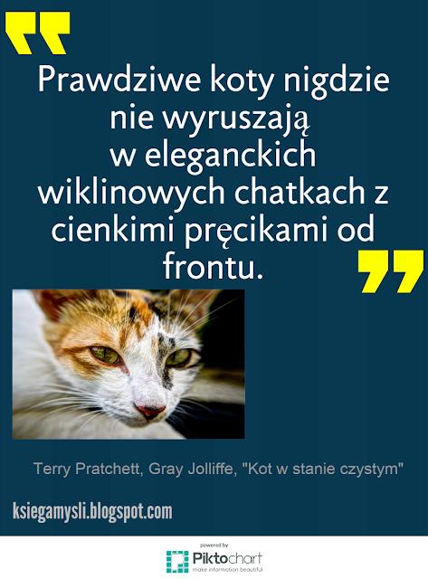 Prawdziwe koty nie wyruszają w eleganckich wiklinowych chatkach z cienkimi pręcikami od frontu.