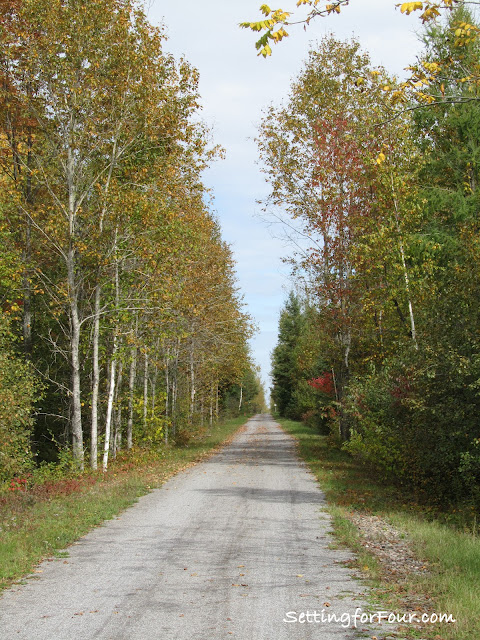 The Trans Canada Trail from Setting for Four