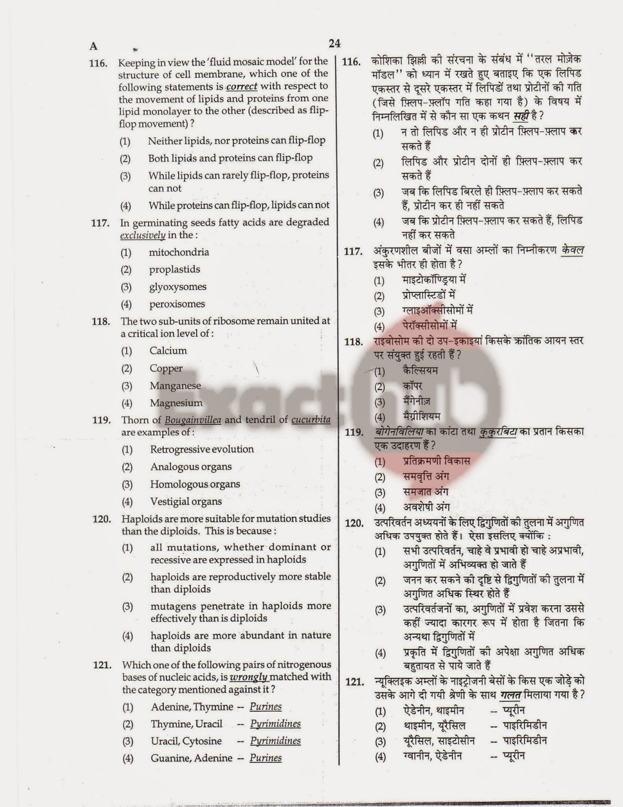 AIPMT 2008 Question Paper Page 24