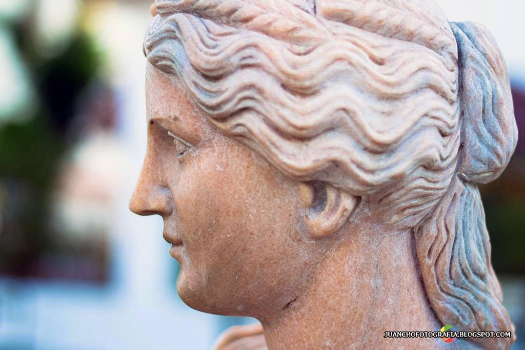Escultura - Cabeza de Perfil
