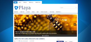 Playa Blogger Template is a wp to blogger template