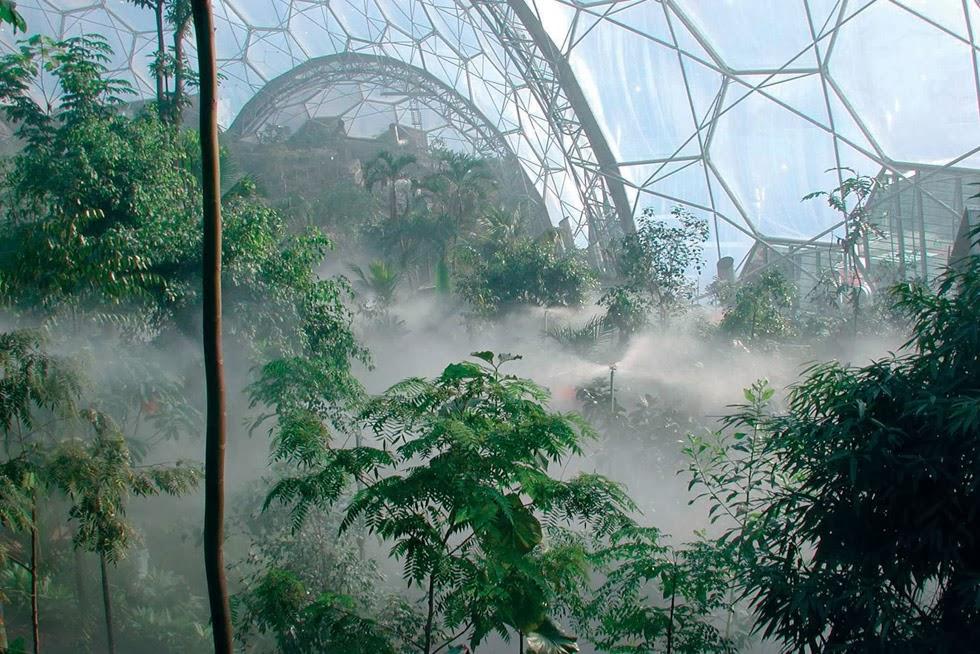 Bioma Tropical