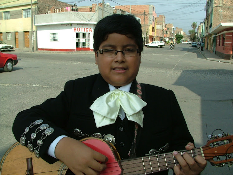 Andy Brian - Vihuela - Mariachi Nuevo Jalisco