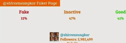 shireen sungkar fake followers
