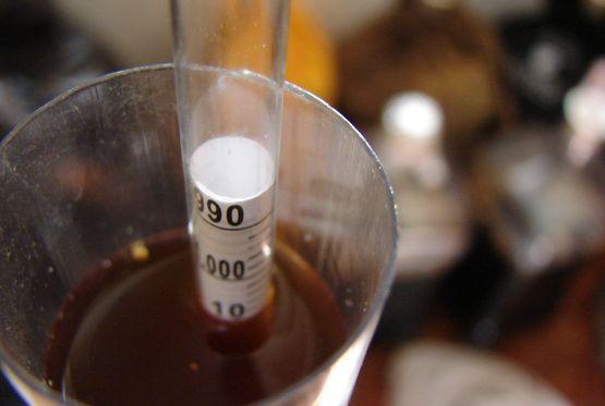 100% Brett Belgian Dark Strong Ale