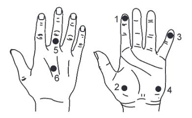 触覚検査の位置
