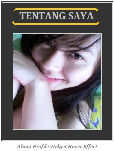 Widget profile image
