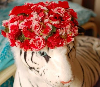 Red Floral Hat