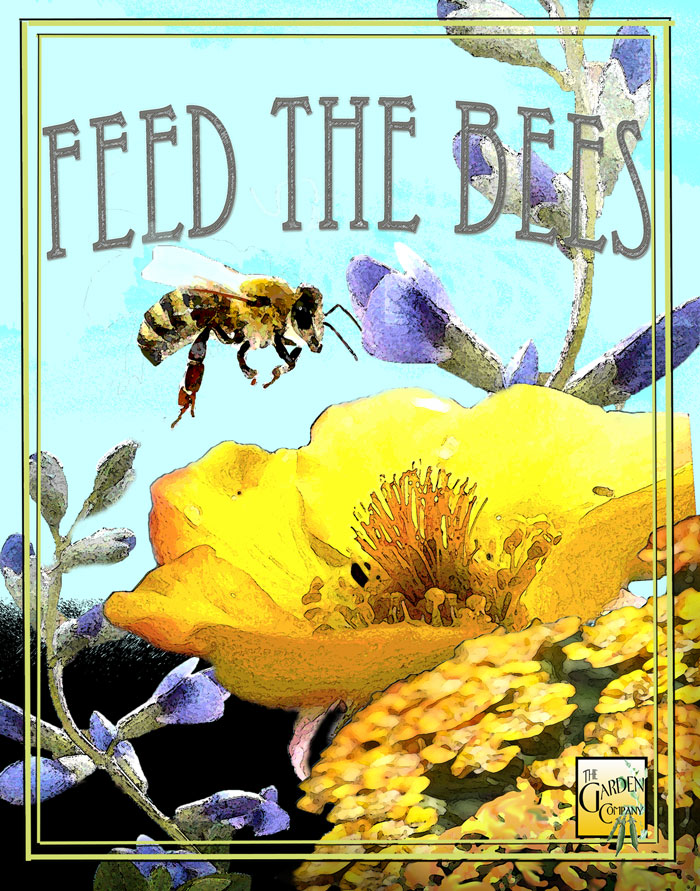 Feeding Our Life Bringing Pollinators