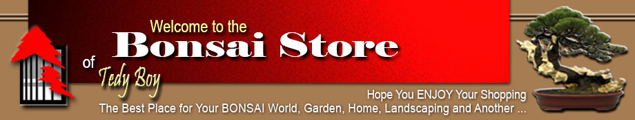 Bonsai Store of Tedy Boy Bonsai Indonesia