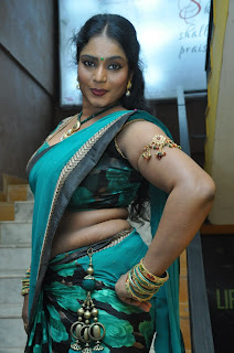 Jayavani  Saree Pictures at Minugurulu Telugu Movie Audio Function  0029.jpg