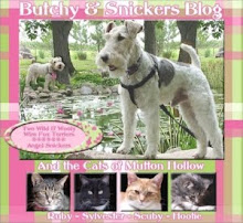 TO VIEW OUR PREVIOUS BLOG FEATURING ANGELS BUTCHY & SNICKERS, PLEASE CLICK ON THE PICTURE BELOW