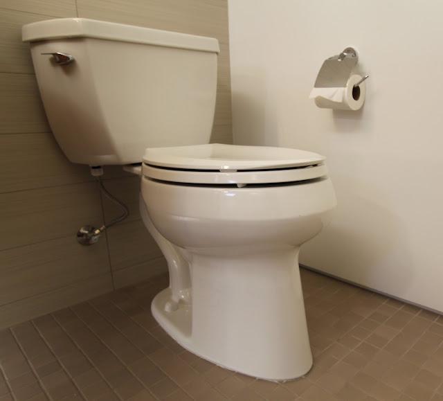 Kohler Wellworth Classic Toilet