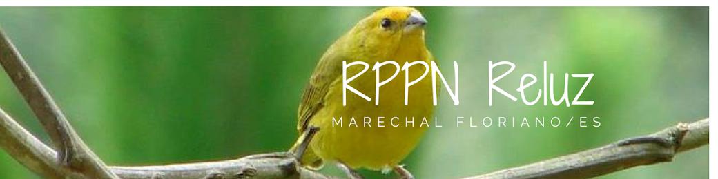 RPPN Reluz