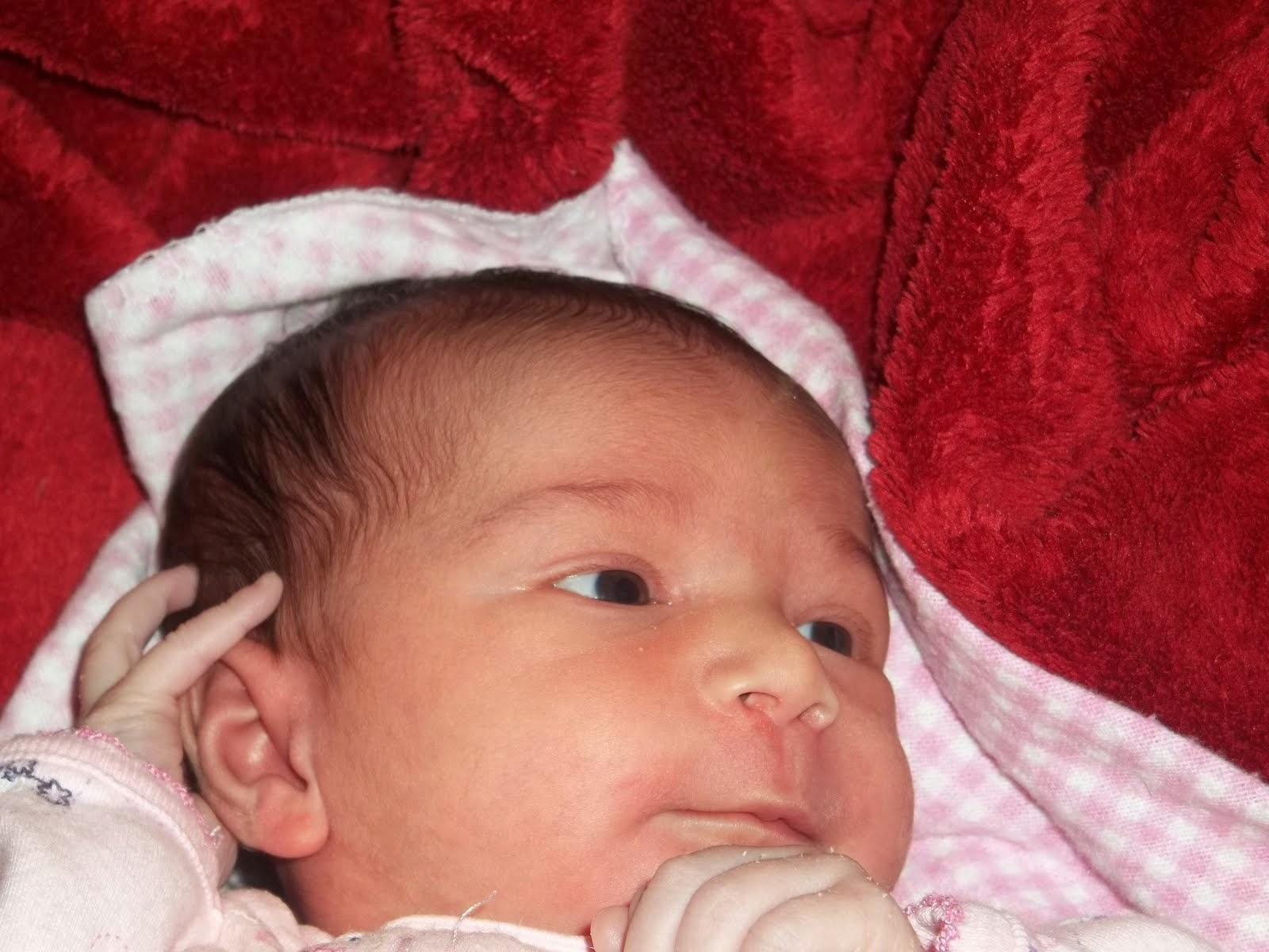 Harper (3 weeks)
