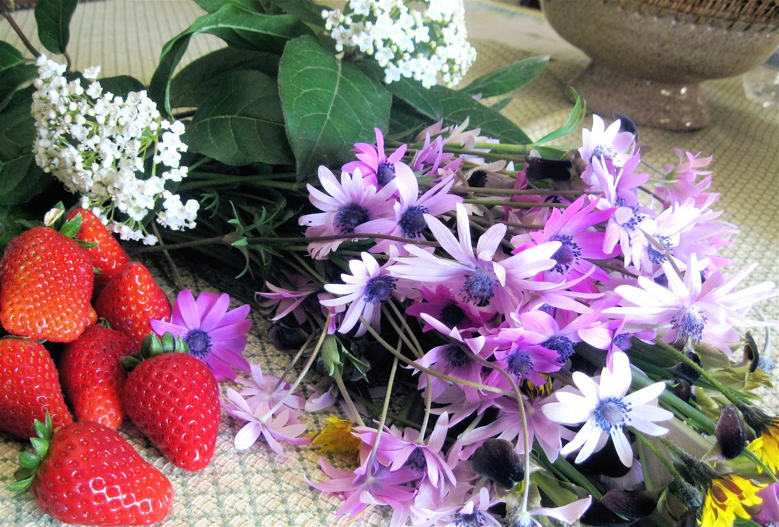 Lavanda rose semplici come fiori di campo for Fiori semplici