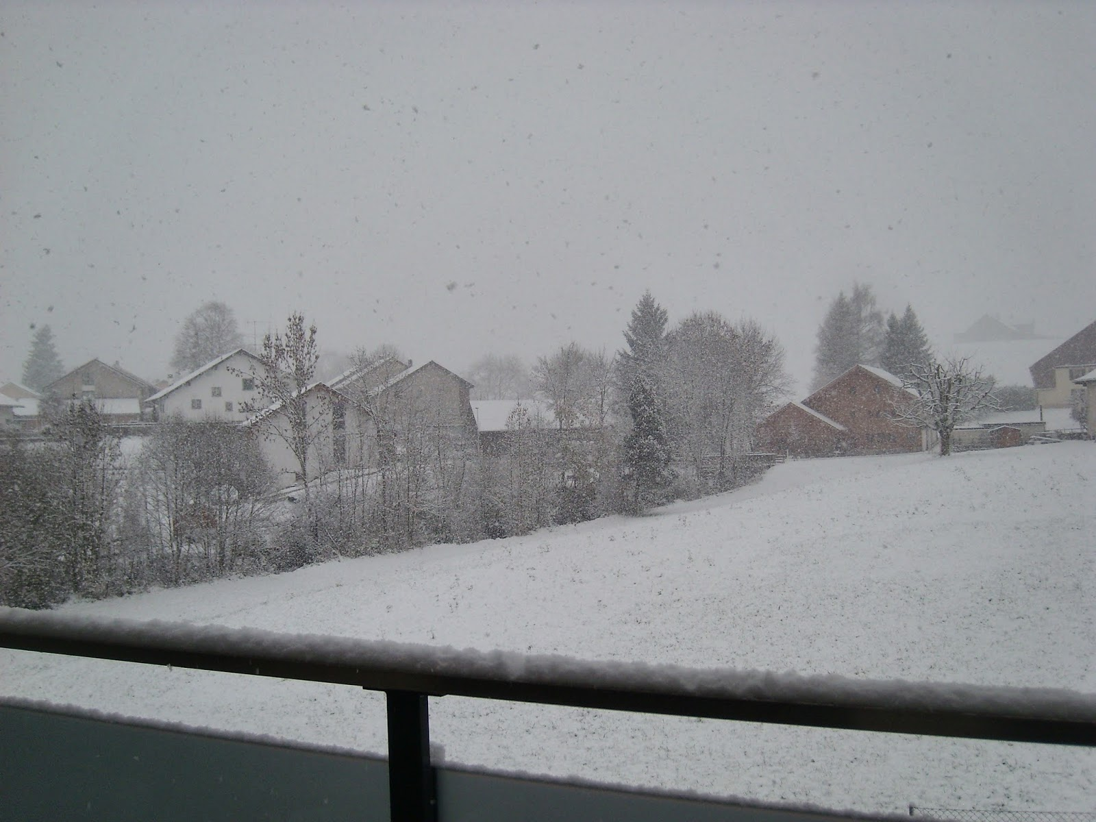 Sobrevivi ao inverno na Suíça.