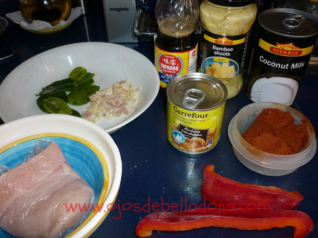 Ingredientes del Curry Rojo de Pollo