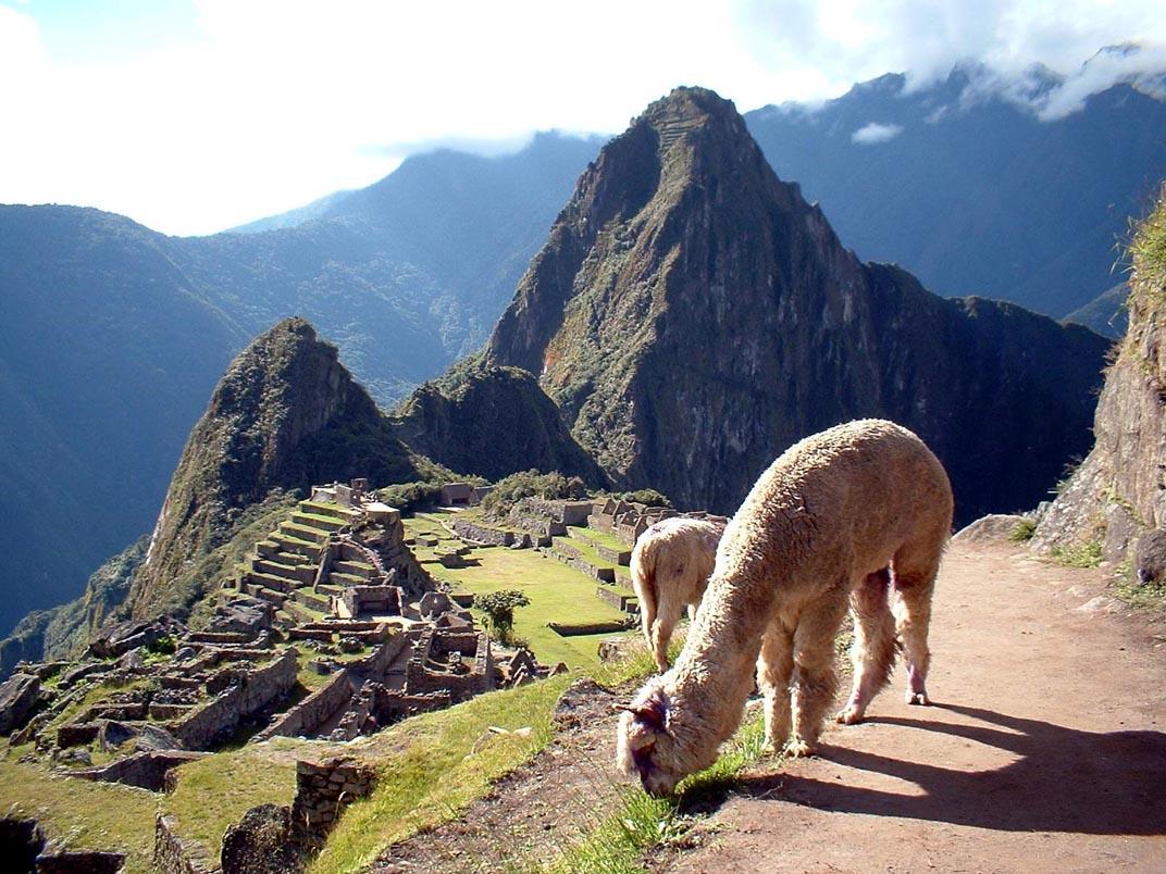 Día Santuario Histórico Machu Picchu