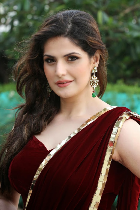 zarine khan glamorous in saree cute stills