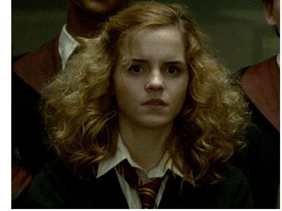 hirthick roshan krish movie hair style : 16. Hermione Granger--Harry Potter Hermione Granger Hair