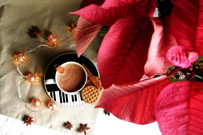 domowa gorąca czekolada | przepis na pyszną gorącą czekoladę