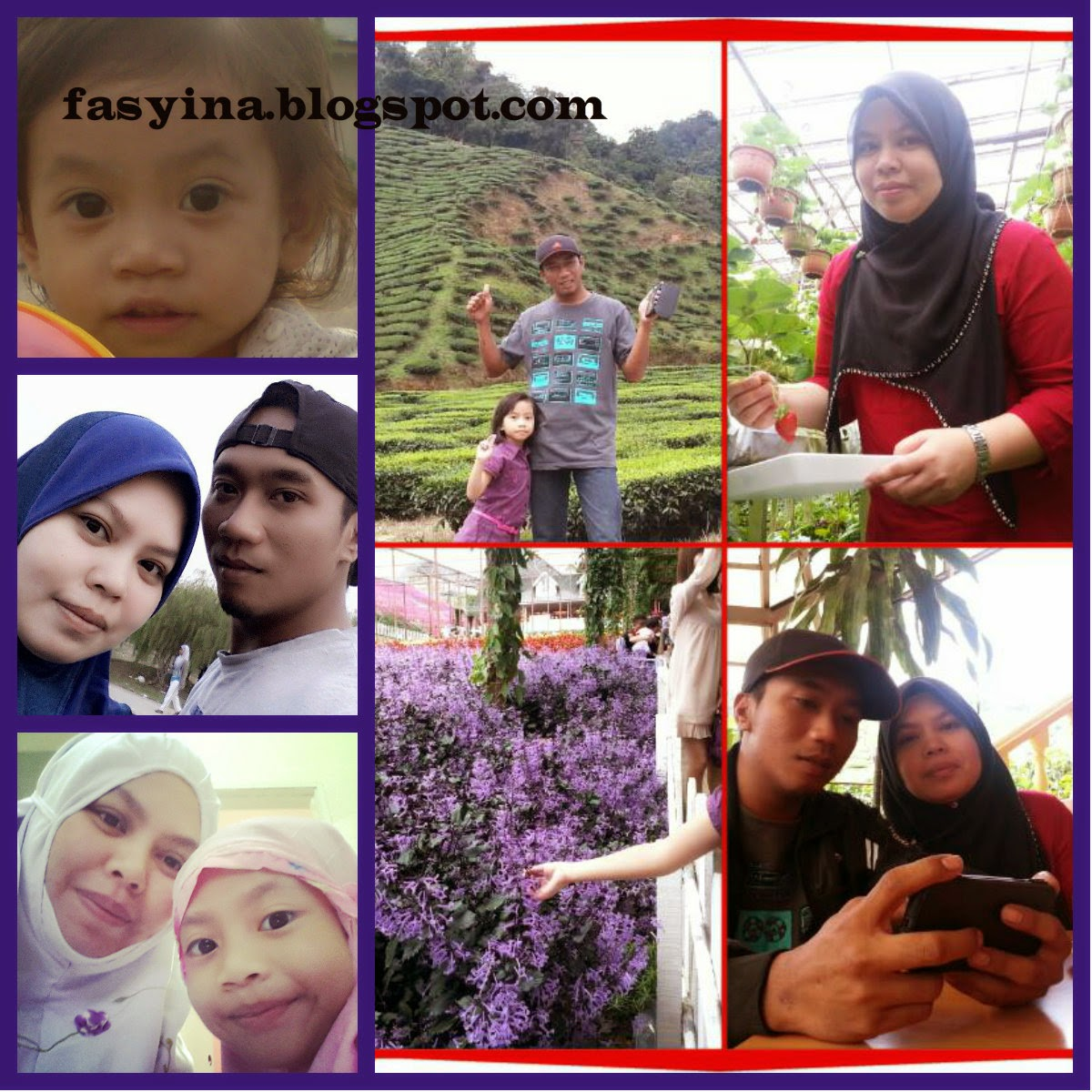 fasyina.blogspot.com