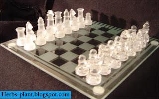 صور شطرنج و افكار جديدة