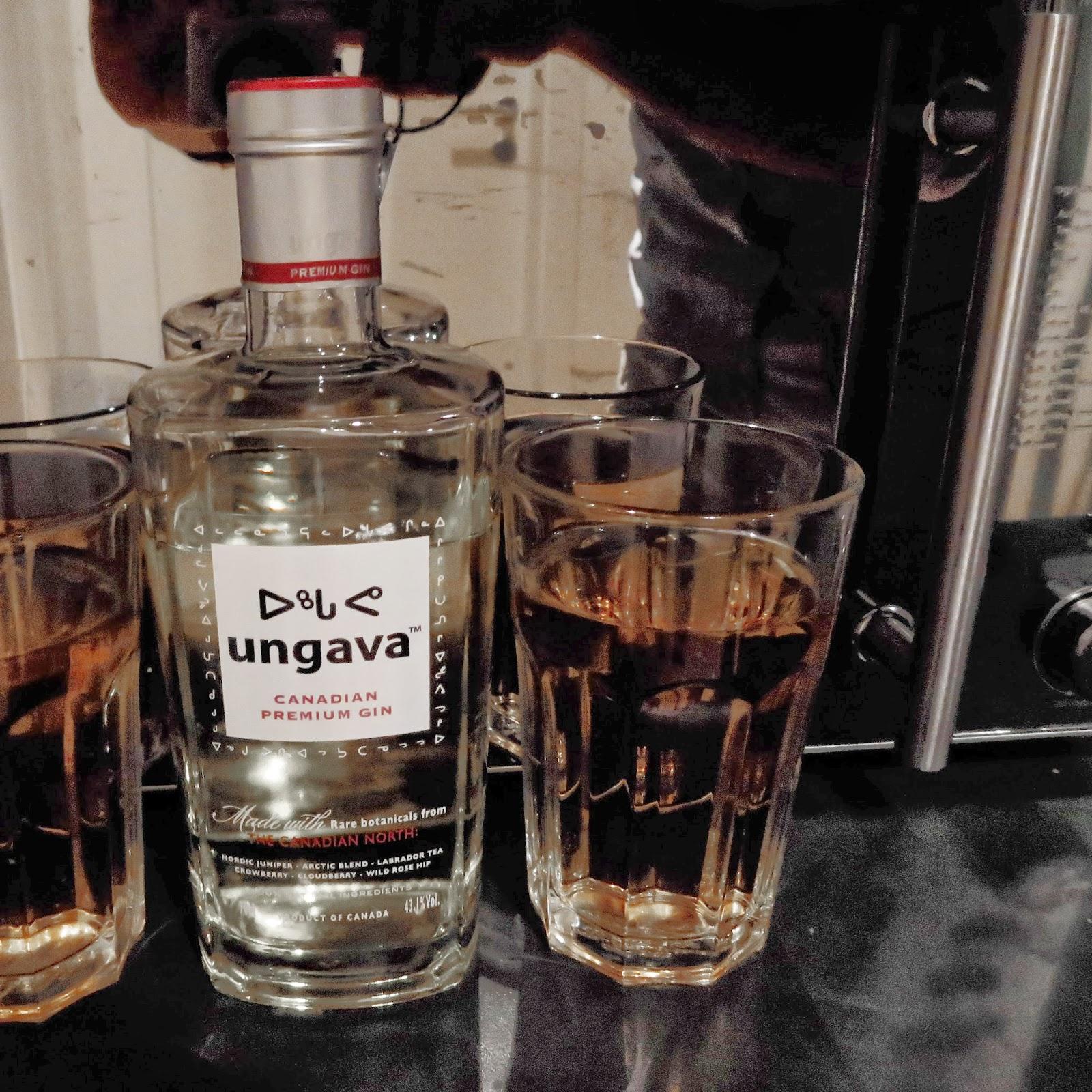 myTestosteron - Produkttests für Männer: Ungava Gin erobert mein ...