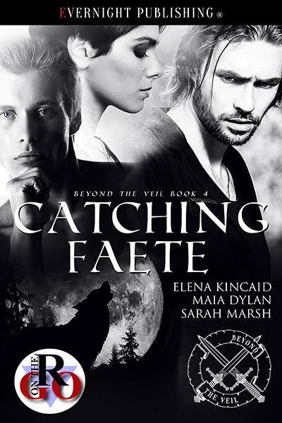 Catching Faete (Beyond The Veil #4)