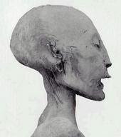 HERES ANOTHER SUSPICIOUSLY SHAPED HEAD