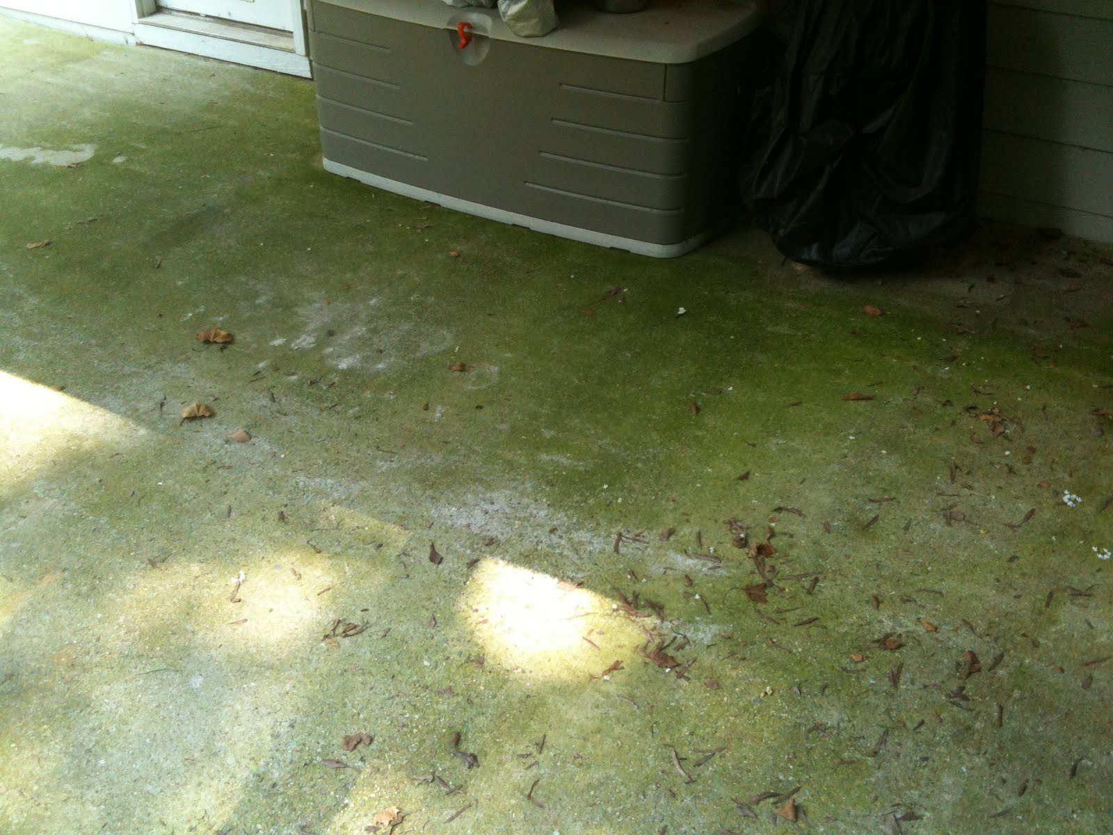 Krud Kutter: Removing the GREEN from the concrete patio with Krud ...