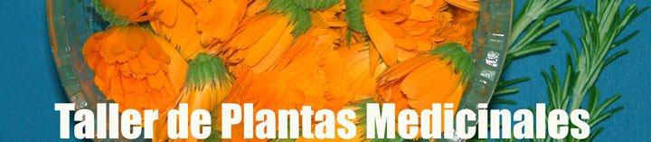 Plantas Medicinales (Taller- Escuela) Cursos de plantas medicinales, cosmética natural