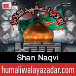 http://www.humaliwalayazadar.com/2015/11/shan-naqvi-nohay-2016.html
