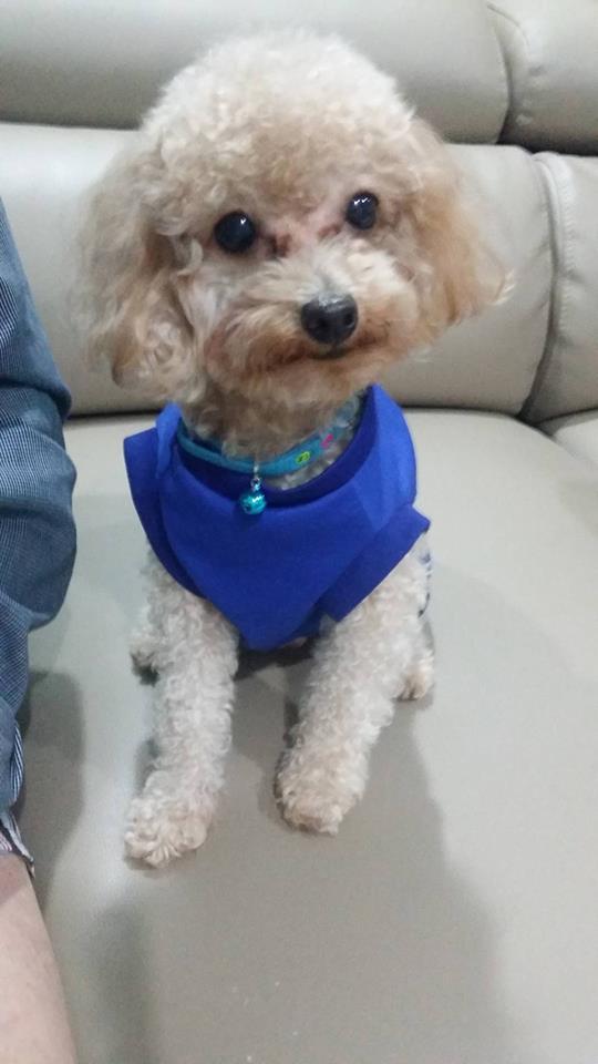 My Bobby ❤
