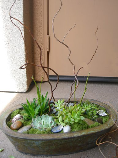 belle maison diy succulent indoor outdoor centerpiece