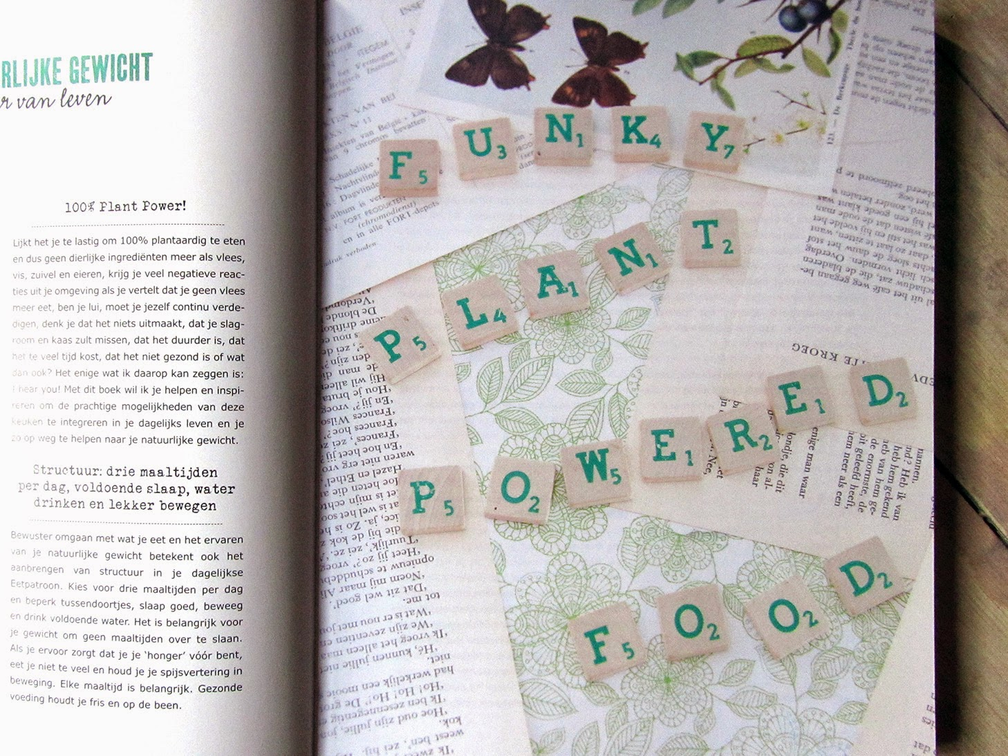 Plant Power: Funky, plant powered food