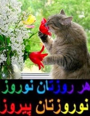 نوروز بر همه خوبان و مهربانان فرخنده باد