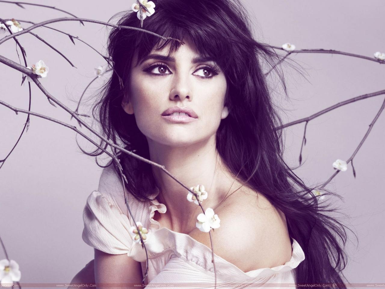 http://3.bp.blogspot.com/-zAGs4OR2Rq4/Tlpdc66LJAI/AAAAAAAAJ-Y/AiPkWBGdIMw/s1600/Penelope-Cruz-beautiful-photo-shoot.jpg