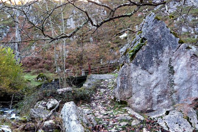 Puente Escobín - Río Casañu - Cabrales - Asturias