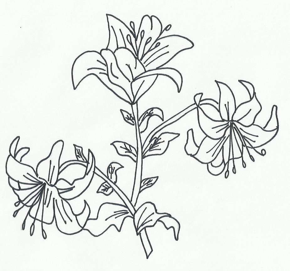 Dibujos de girasoles para colorear por los niños. Imágenes