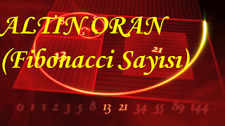 Fibonacci Sayı Dizisi ve Altın Oran