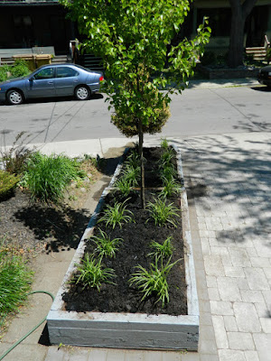 The Pocket garden renovation after by Paul Jung Gardening Services Toronto