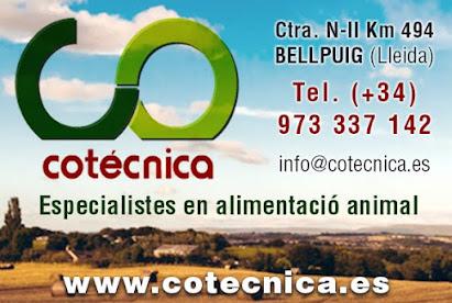COTECNICA, S.C.C.L